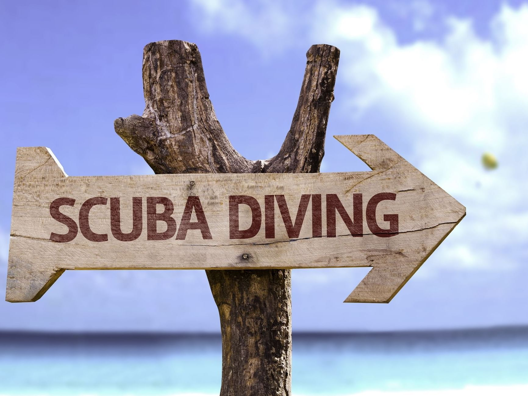 Direction arrow for scuba diving site at Daydream Island Resort