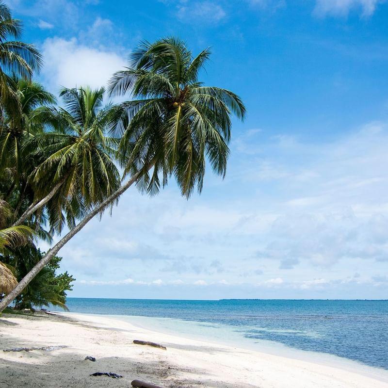 Robinson Crusoe Island - WARWICK CORPORATE
