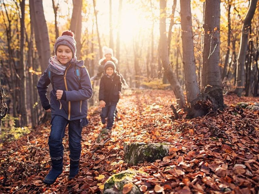Two Children running in the forest near Ana Hotels Sport Poiana