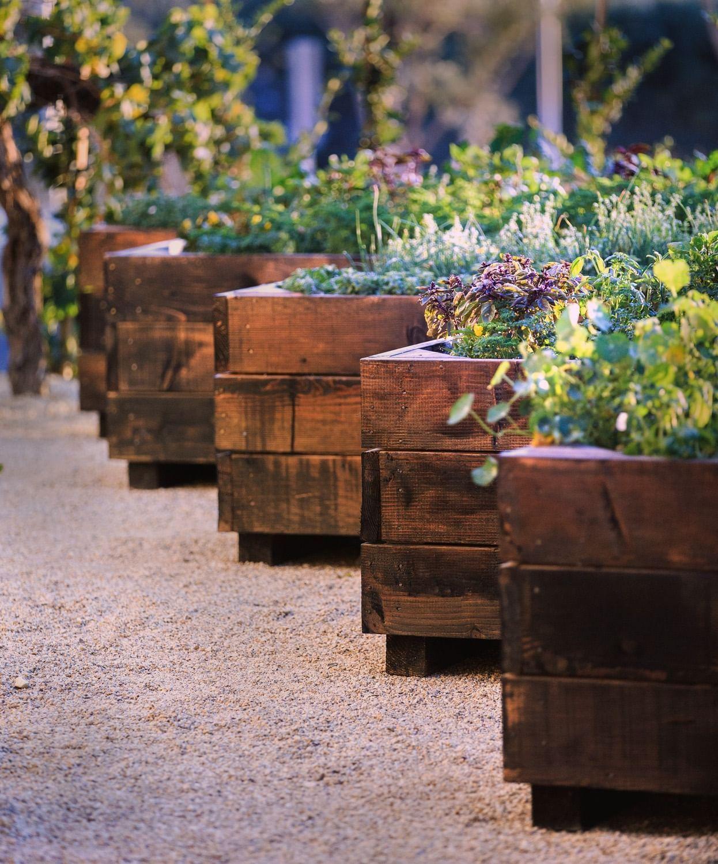 Cello restaurants garden planters