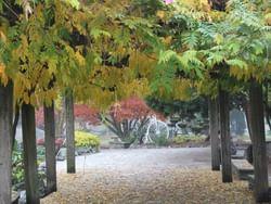 Scopri il Parco del Valentino | Cosa fare a Torino
