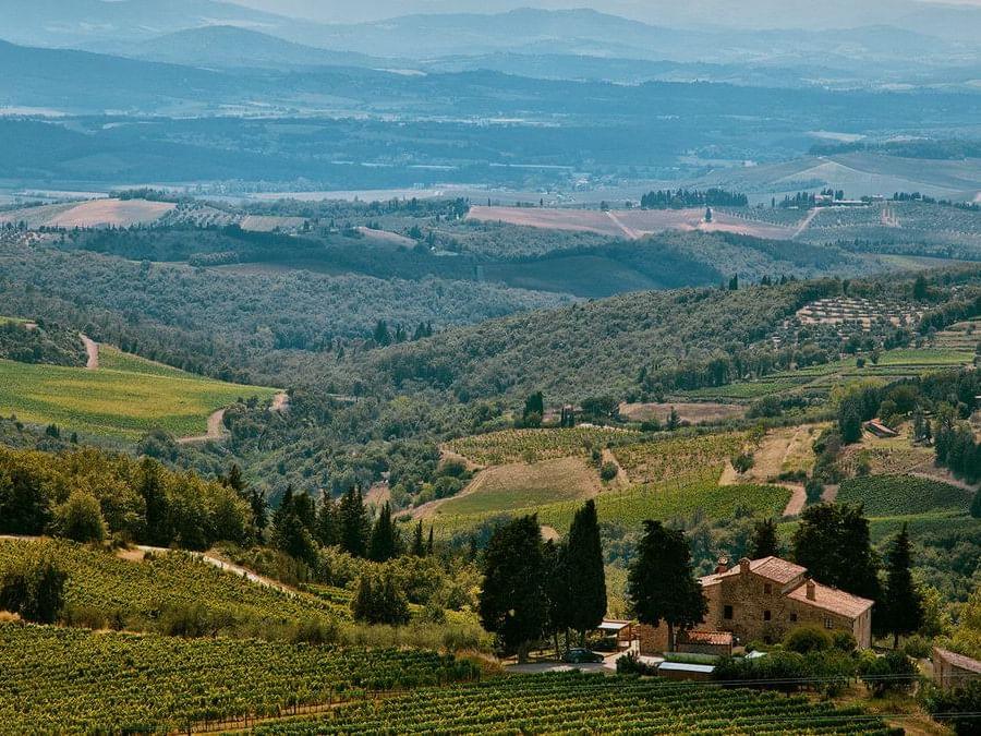 Four Italian Wine Routes