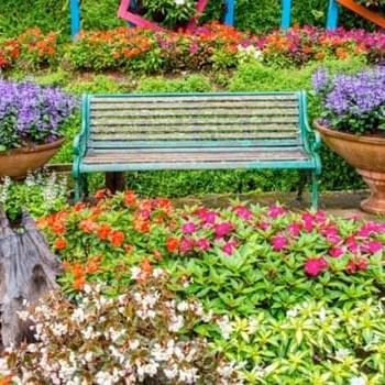 a bench surrounded by flowers