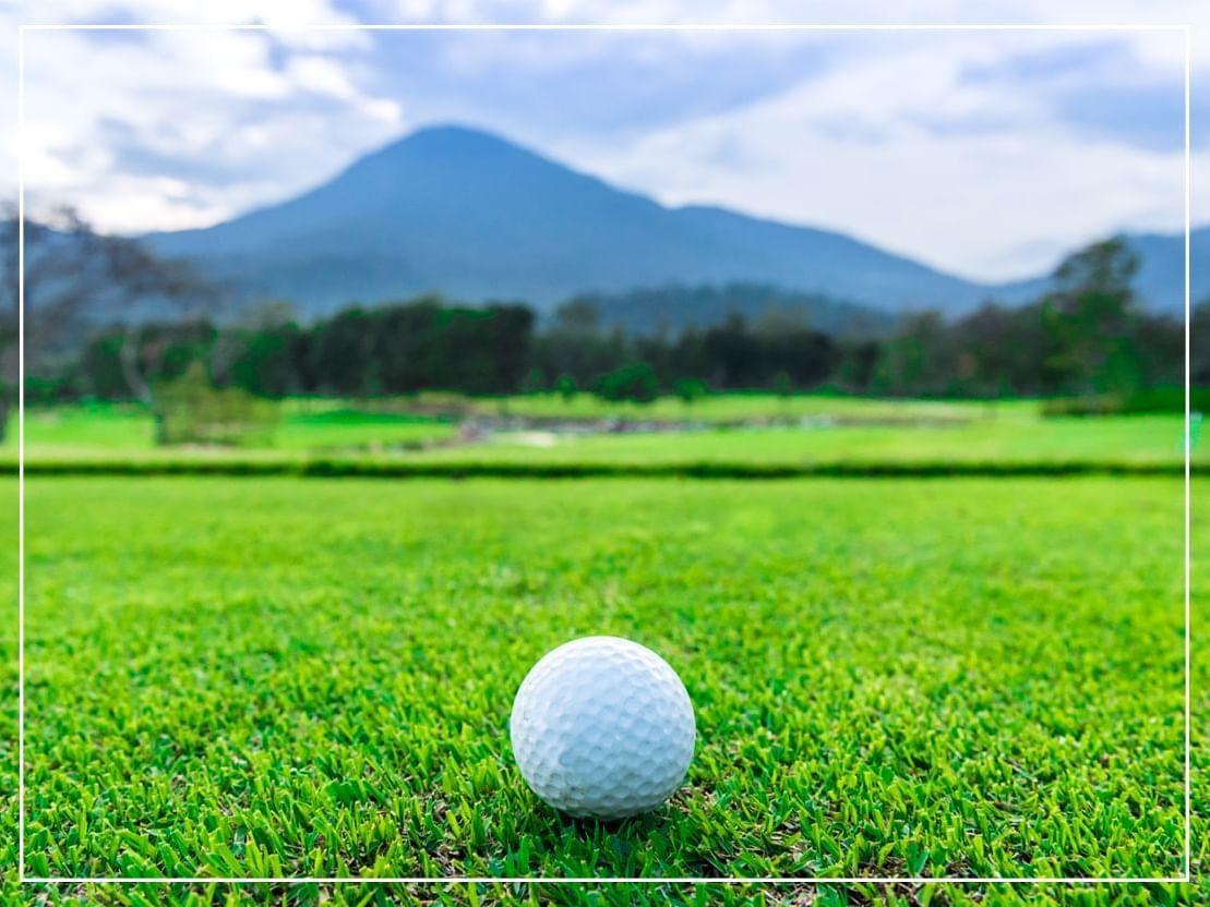 Golf ball at Chatrium Golf Resort Soi Dao Chanthaburi