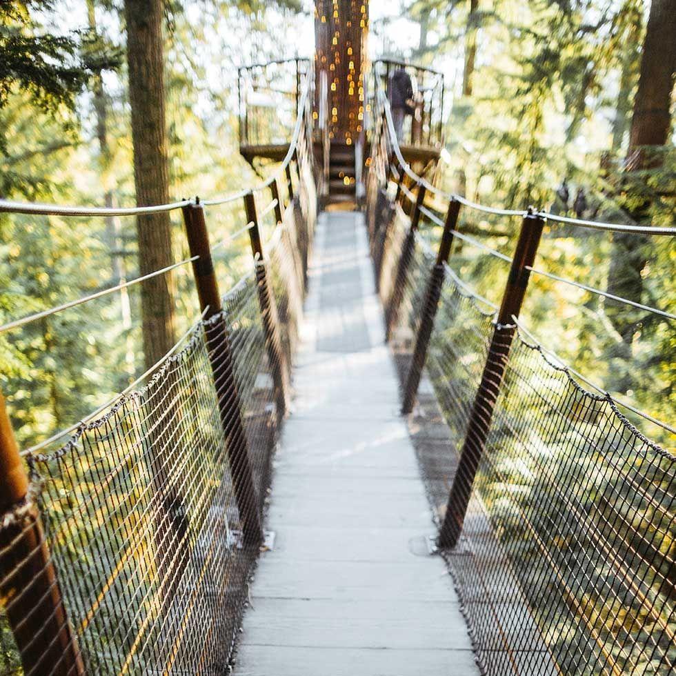 Althodis Treetop Skywalk near Falkensteiner Hotels and Residences