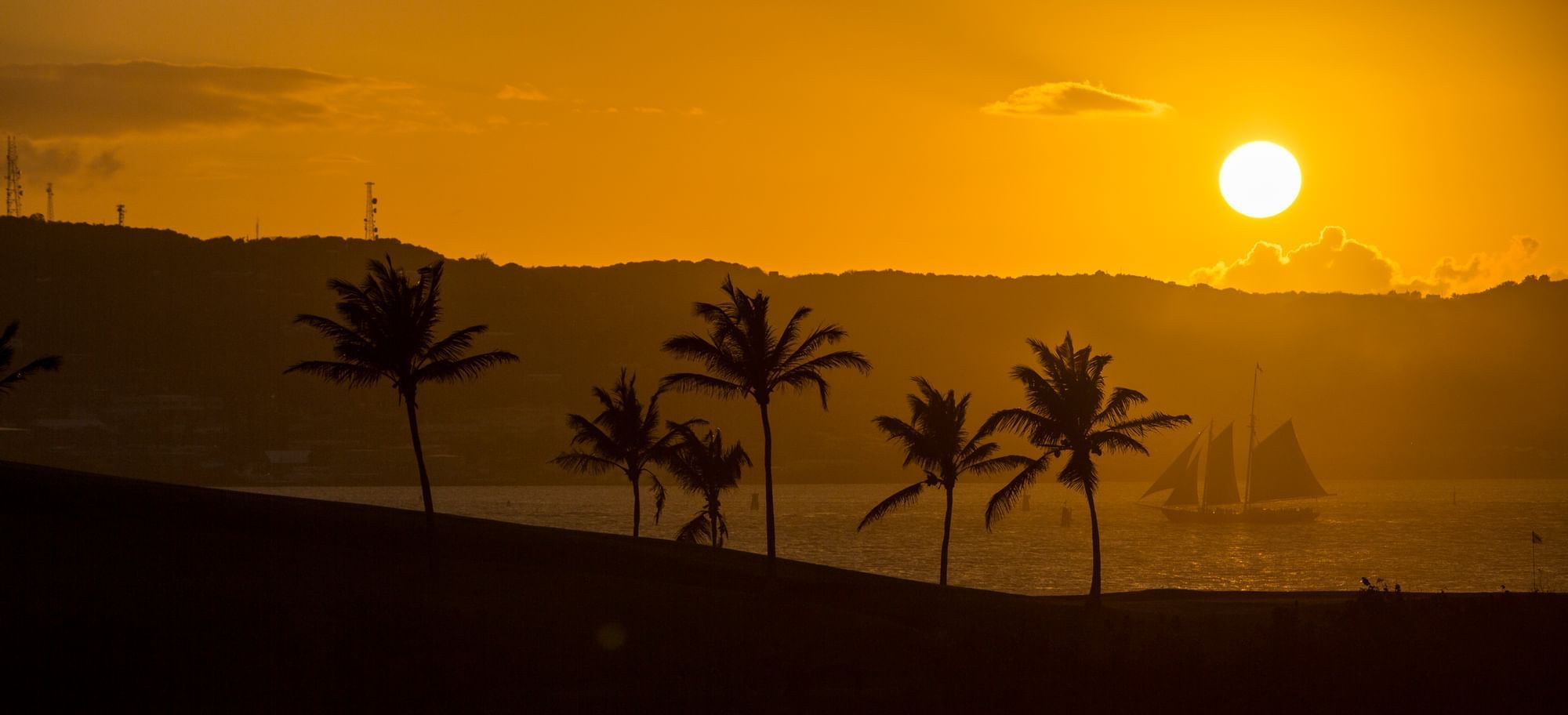 Beach with palm trees at sunset with ship coming in
