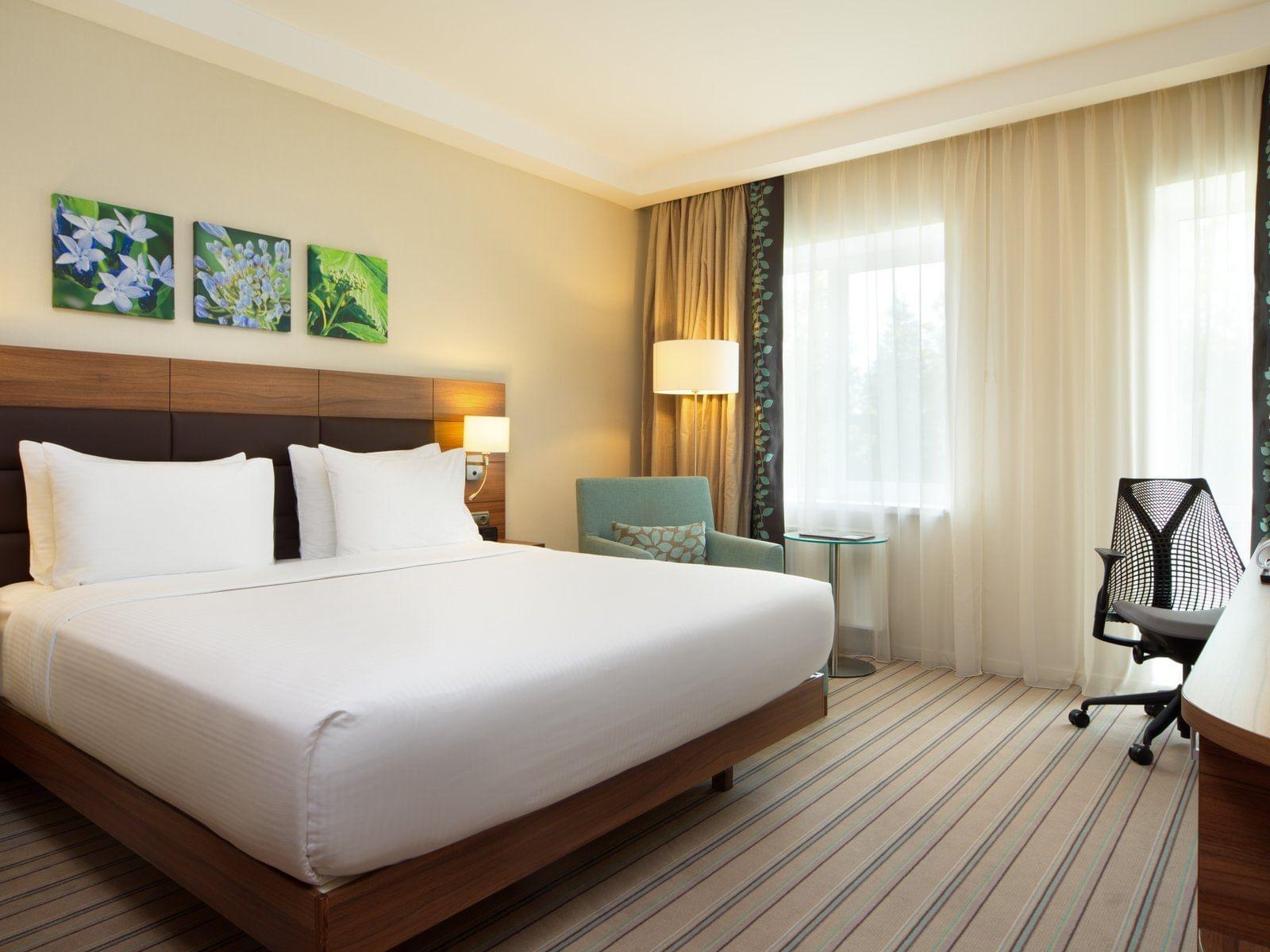 Standard Room at Hilton Garden Inn Moscow New Riga Hotel