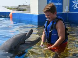 Swim with Dolphins at Marineland