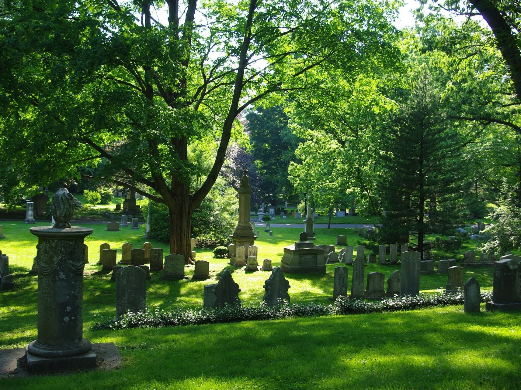 headstones in a cemetery