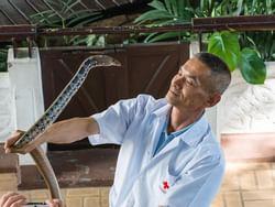 Snake Farm (Queen Saovabha Memorial Institute) near Chatrium Hotel Riverside Bangkok