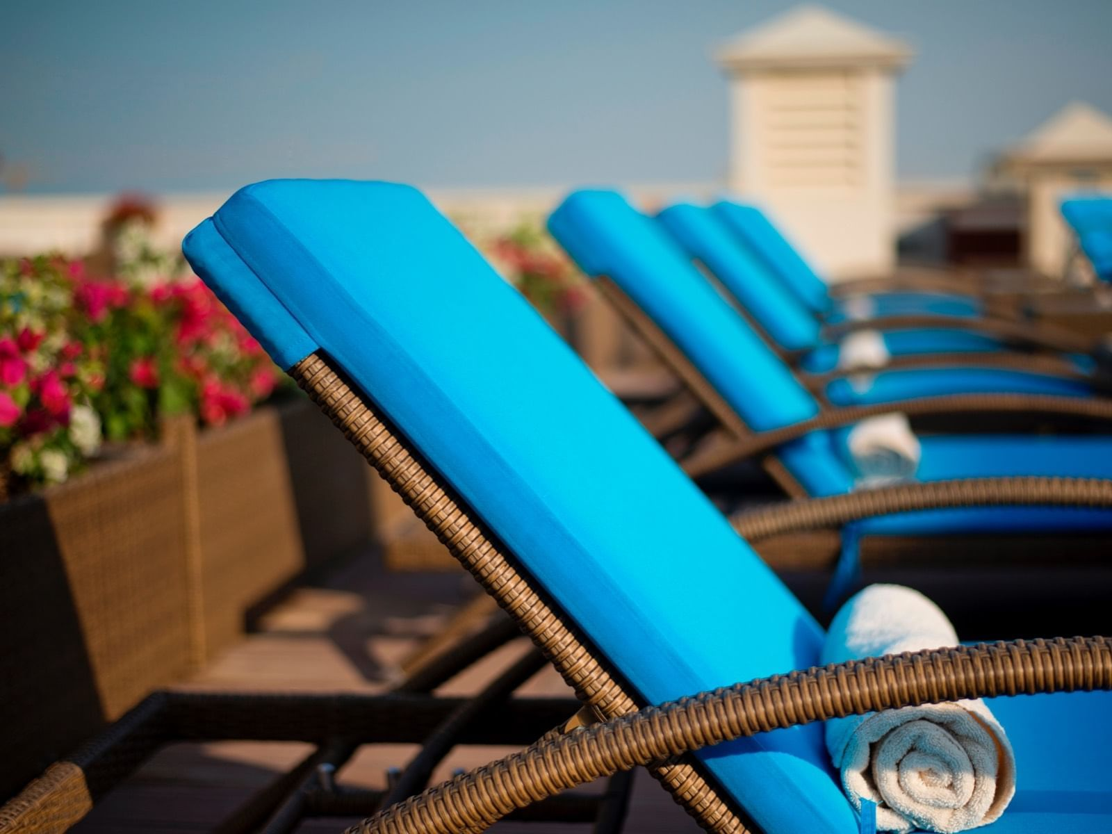 المسبح في Warwick Hotels and Resorts