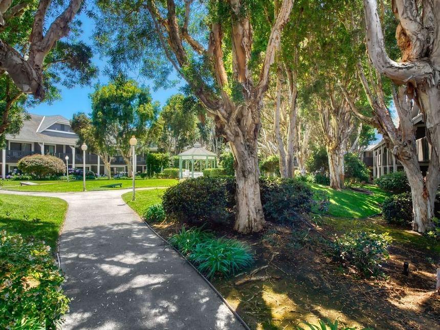 Carlsbad Hotel Courtyard | Stay in San Diego | Carlsbad by the Sea Hotel