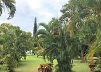Waimea Plantation Cottages grounds