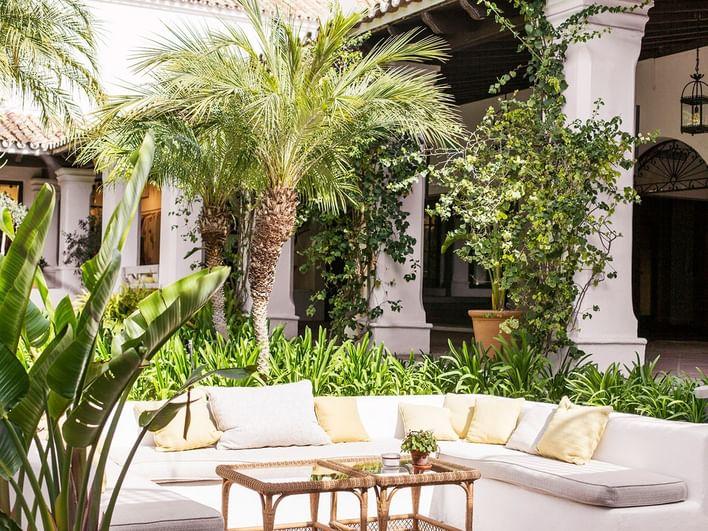 Exterior garden view at Marbella Club