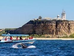 Coast XP