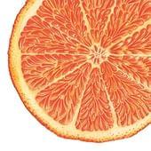 Orange at Marbella Club