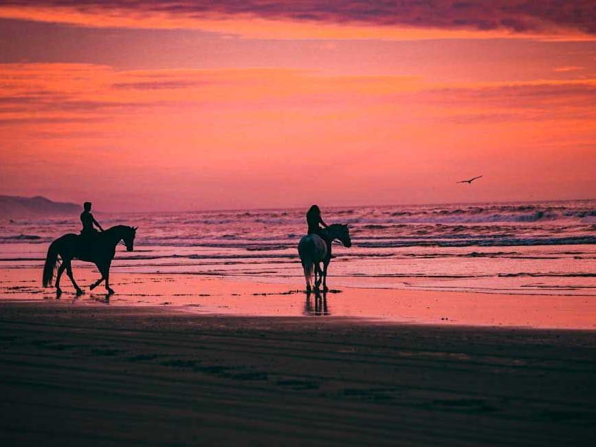 Horseback riding Tamarindo Costa Rica
