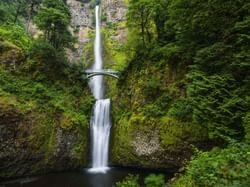 Portland Multnomah Falls