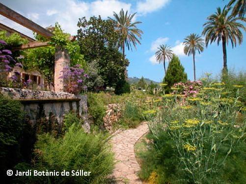 Jardín Botánico de Sóller   Mallorca