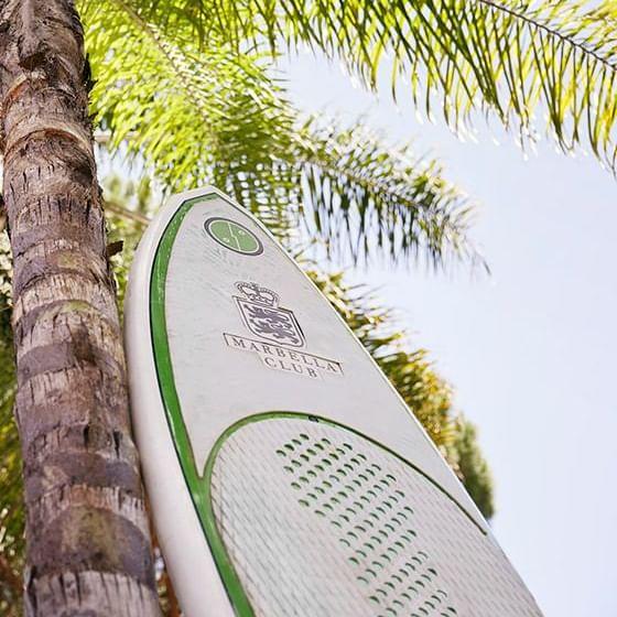 Sur board leaned onto a coconut tree