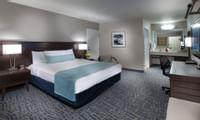 The Safari Inn - Standard Room King - 1