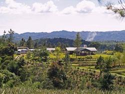Croydon mountains Landscape view near Holiday Inn Montego Bay
