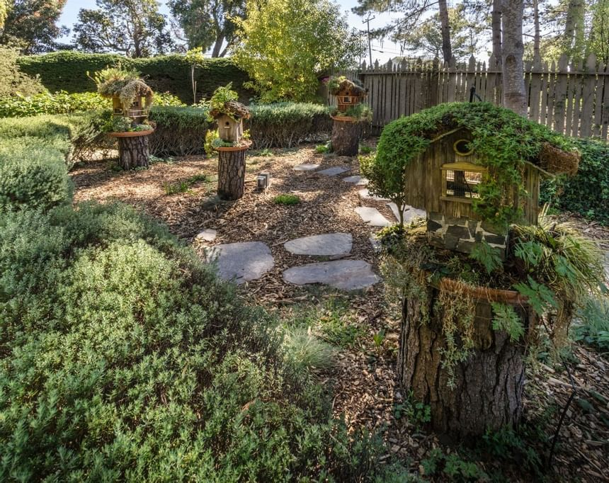 Cobblestone walkway surrounded by multiple birdhouses