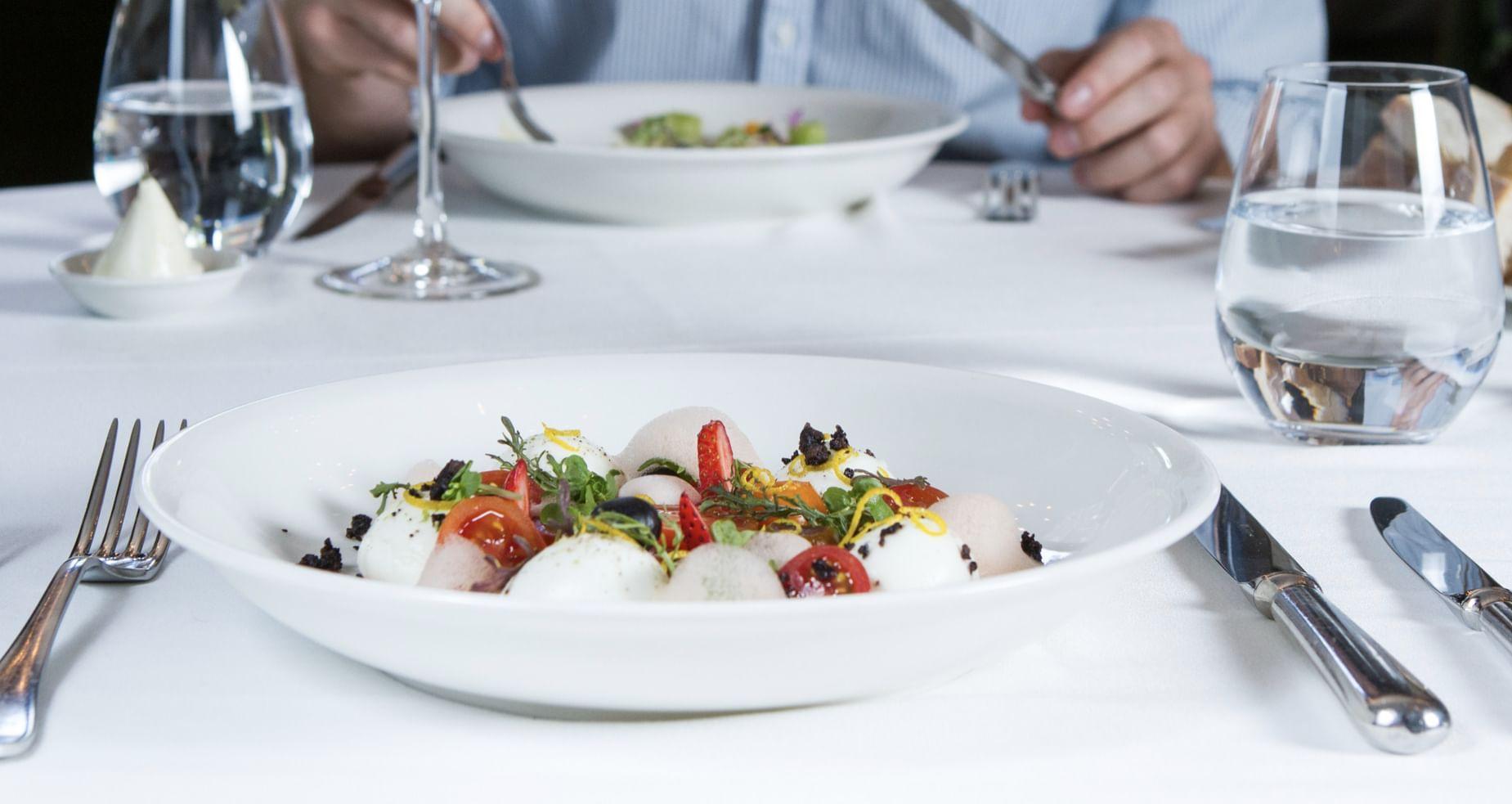 Gastronomy Hotel Restaurant
