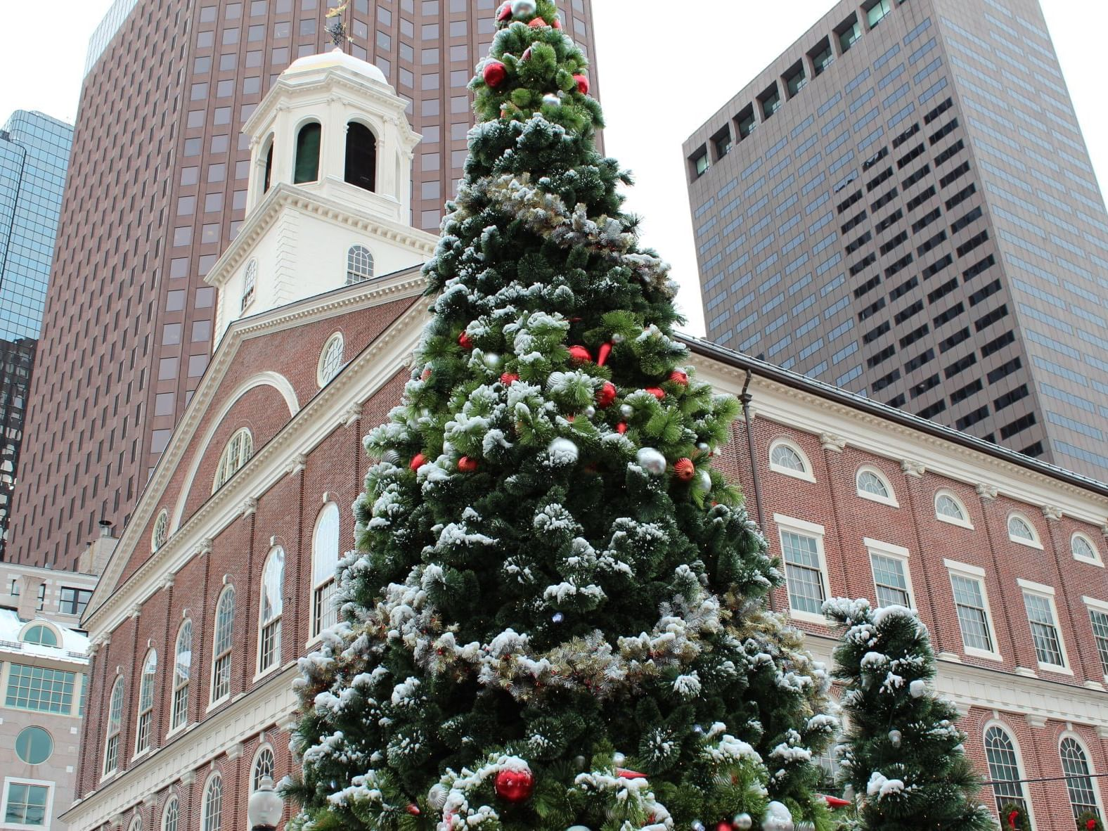 A decorated evergreen tree in front of a city scene with brick and glass buildings
