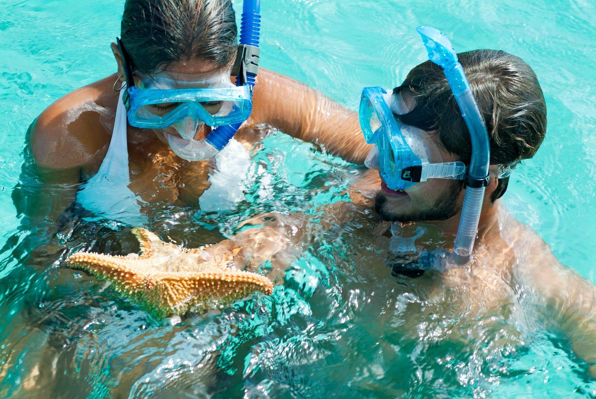 Pair of Buck Island Snorkelers with starfish