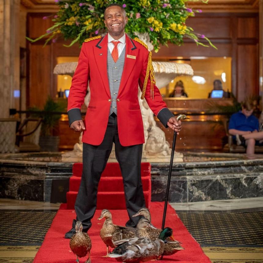 Caretaker of Peabody Ducks at Peabody Hotels & Resorts in 2021