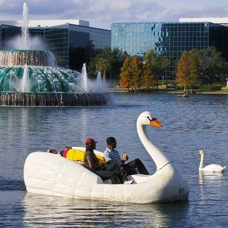 two people riding a swan boat