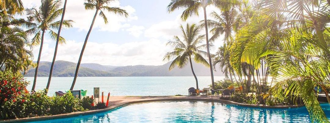 Sea view through the palm trees from Daydream Island Resort