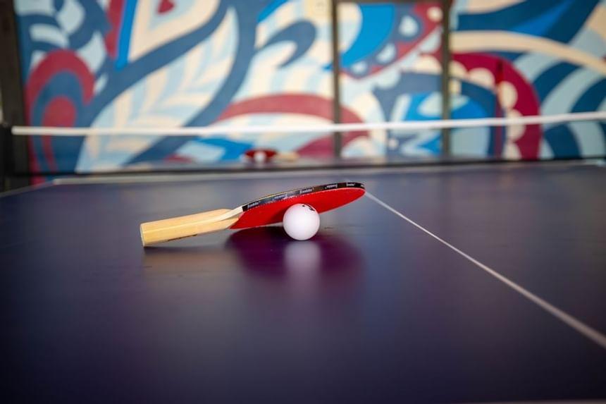 paddle ball racket and ball