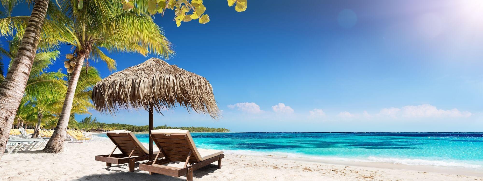 Sun loungers on beach at Daydream Island Resort