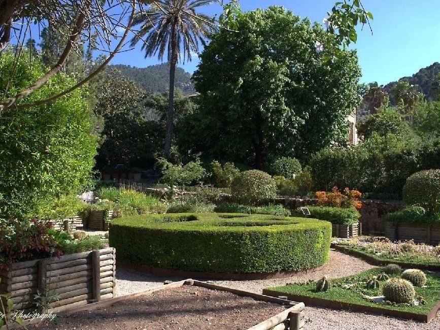 Sóller Botanical Garden