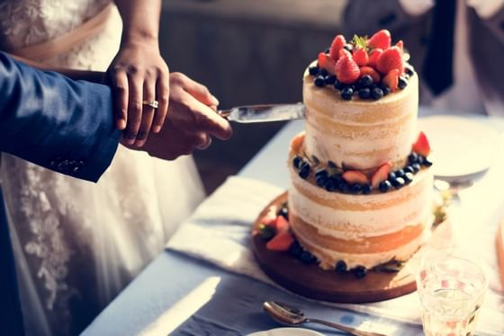 Bride and groom cutting into wedding cake topped with fruit