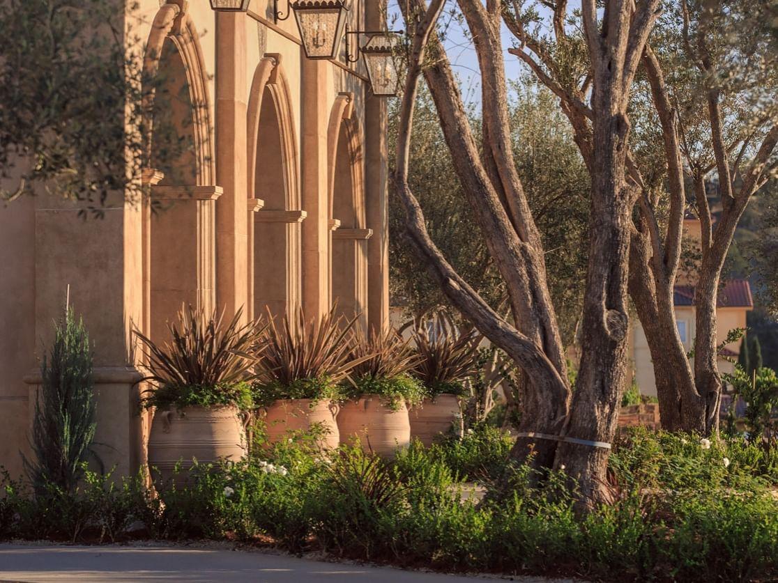 Allegretto Vineyard Resort's stone archways