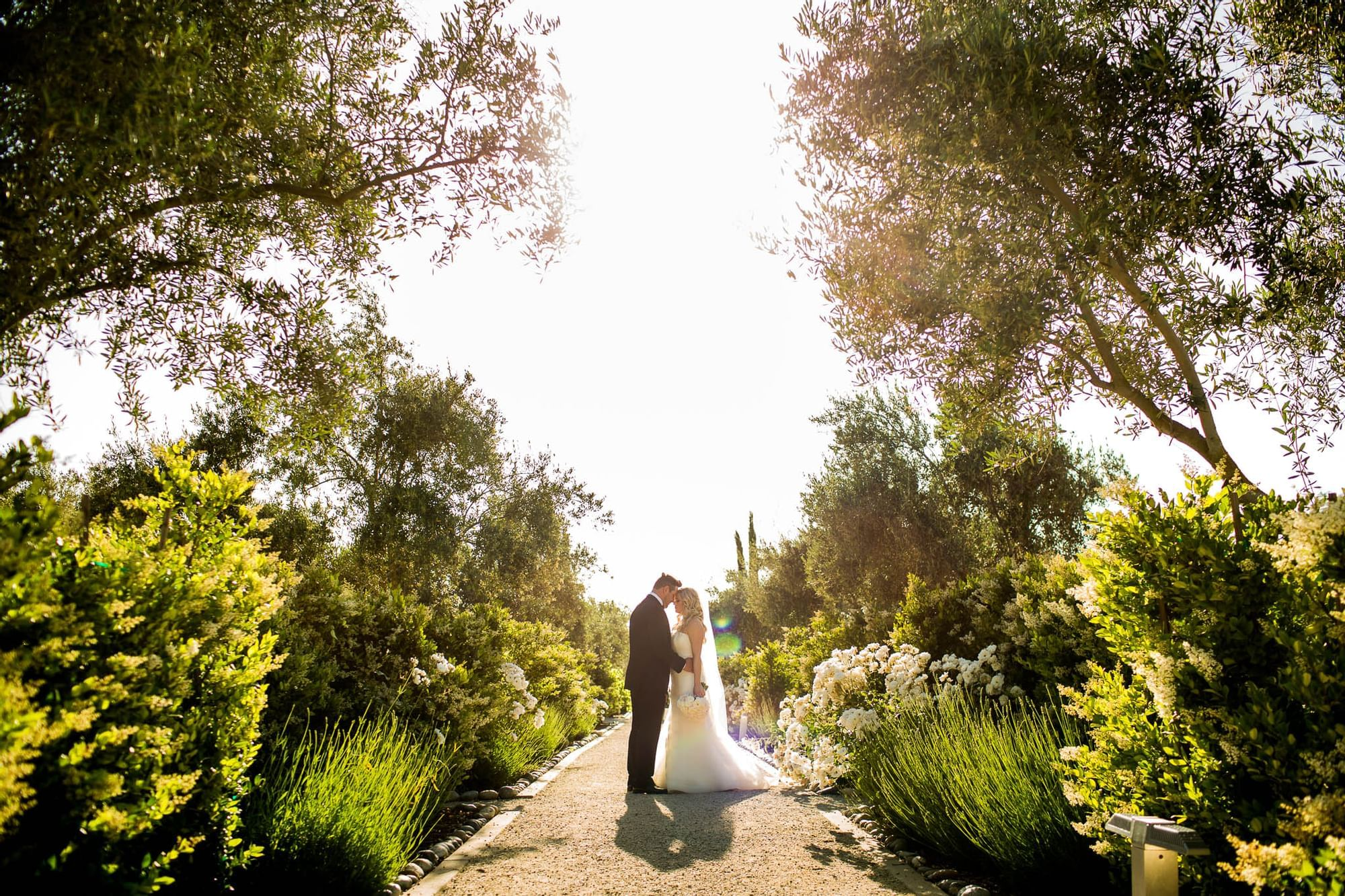 Bride and groom touching forward while standing in landscape