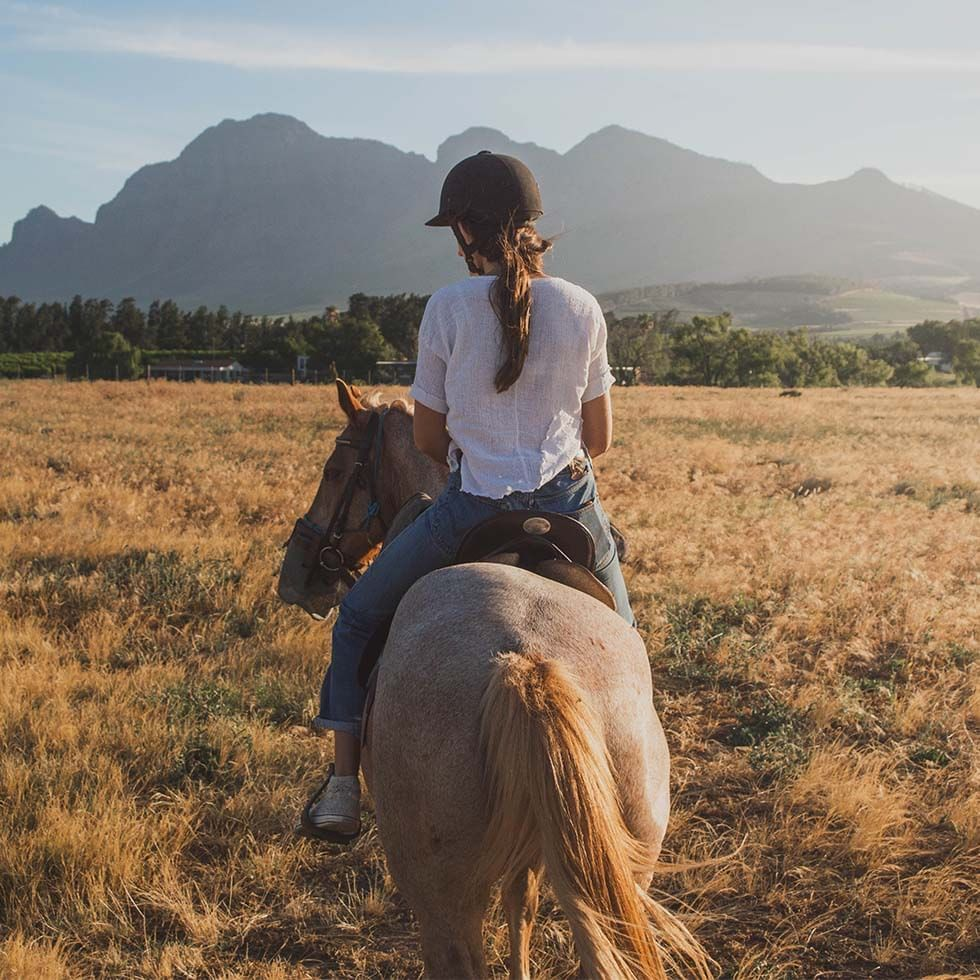 Horse Riding near Falkensteiner Hotels and Residences