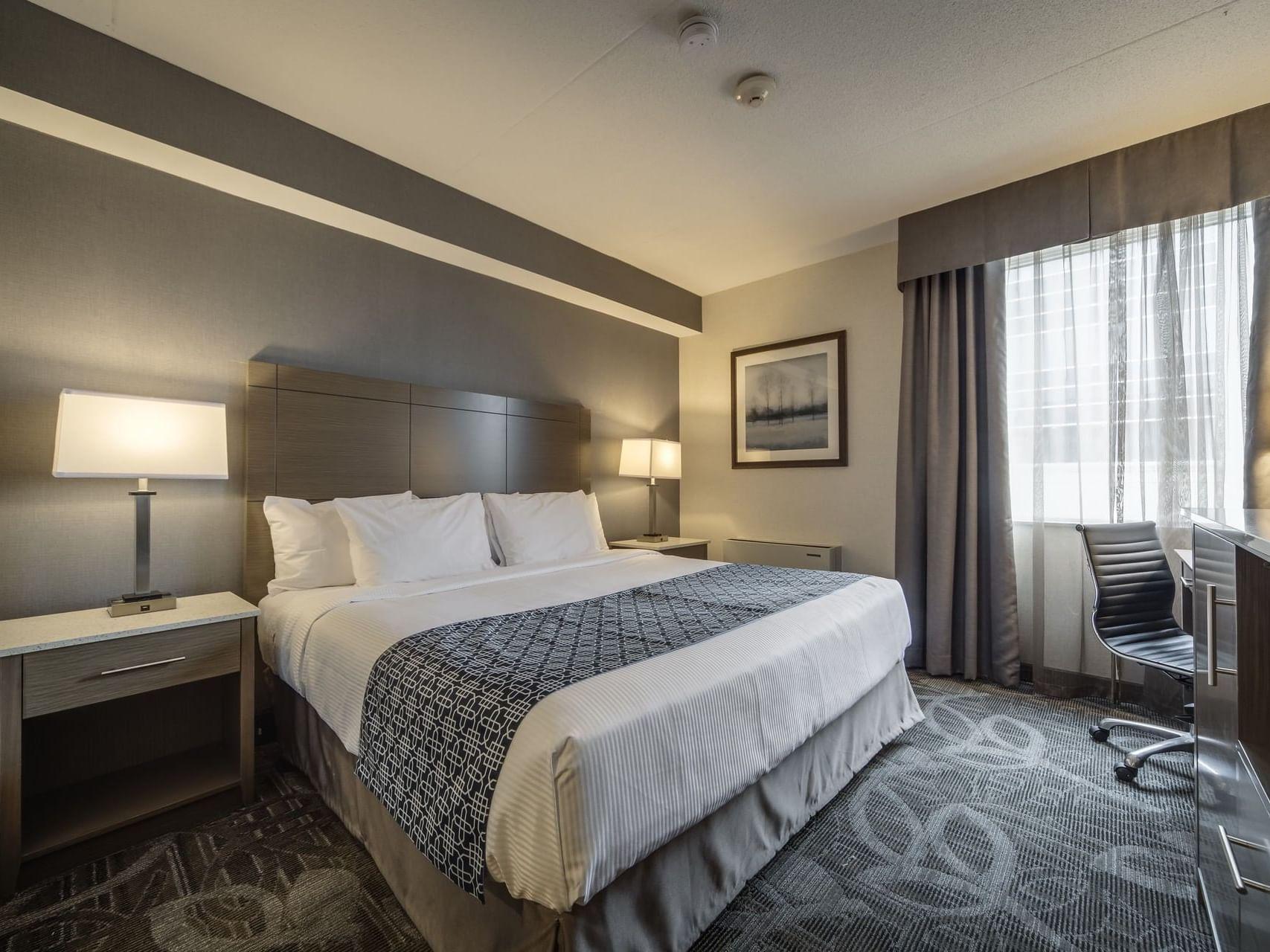 Suites - Monte Carlo Inn Airport Suites