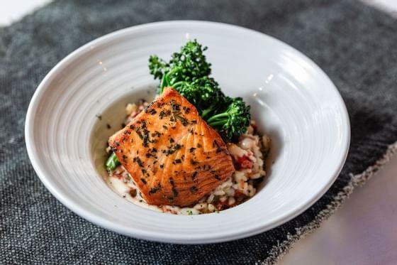 salmon and rice dish