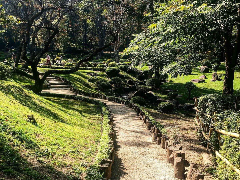 Walkway with green surroundings at Colomos Park in Guadalajara