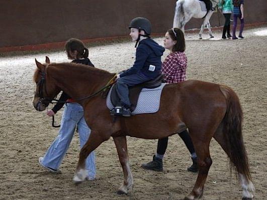 Un niño va a montar a caballo.