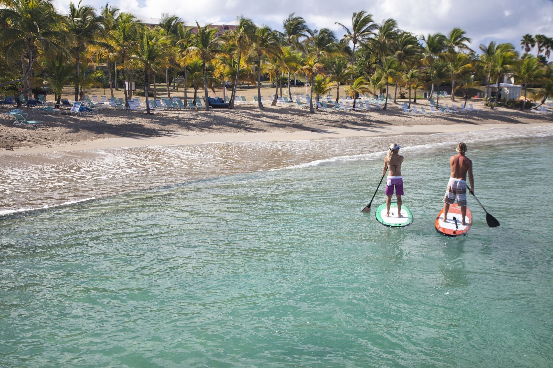 Pair of Stand Up Paddle Boarders