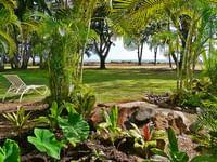 view of the foliage at Waimea Plantation Cottages