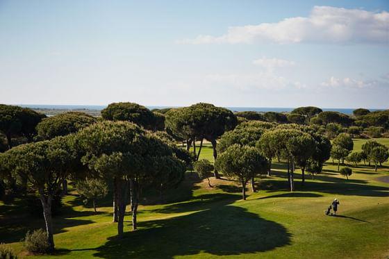 golf field at Precise Resort El Rompido