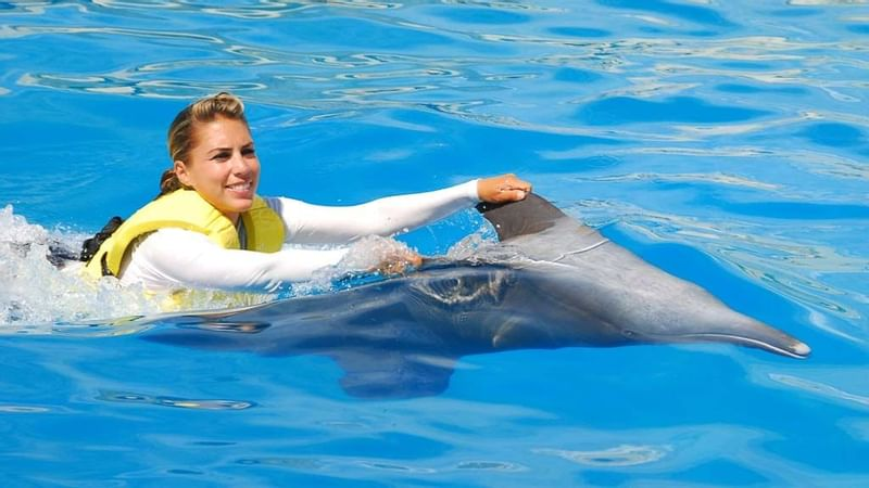 A woman dolphin riding at The Reef Resorts