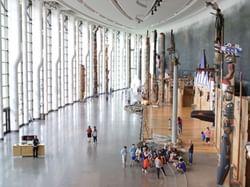 people walking around museum of history