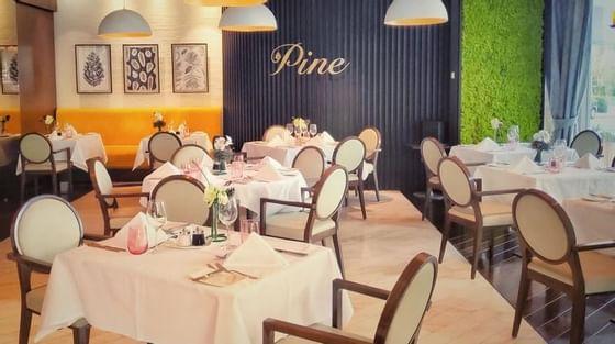 The Pine Restaurant & Terrace at Crowne Plaza Hotel Bucharest